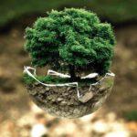 8 scelte green per salvare il pianeta ogni giorno
