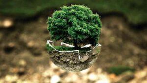 8 piccoli gesti per salvare il pianeta